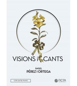Visions i cants
