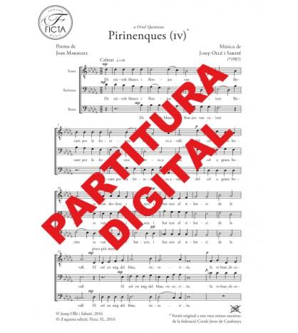 Pirinenques IV Cor TBrB